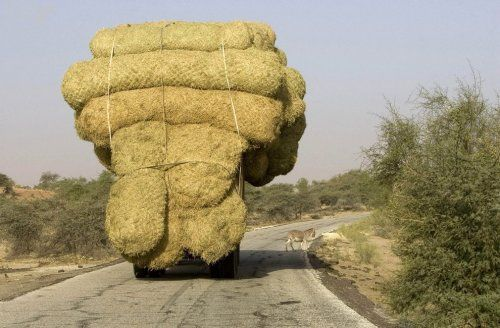 Особенности национальных перевозок - фото 24