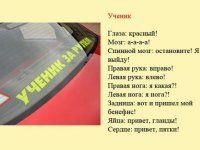 Разновидности водителей и их поведение на дороге - фото 8