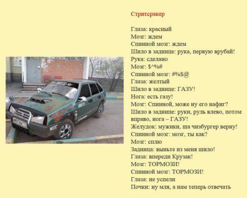 Разновидности водителей и их поведение на дороге - фото 9