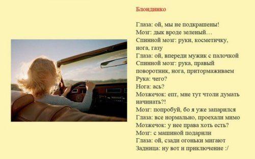 Разновидности водителей и их поведение на дороге - фото 6