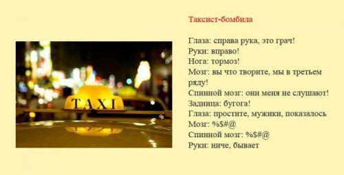 Разновидности водителей и их поведение на дороге - фото 7