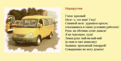 Разновидности водителей и их поведение на дороге - фото 3