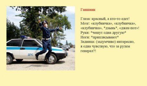 Разновидности водителей и их поведение на дороге - фото 5