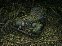 Брошенные автомобили в объятиях природы - фото 11