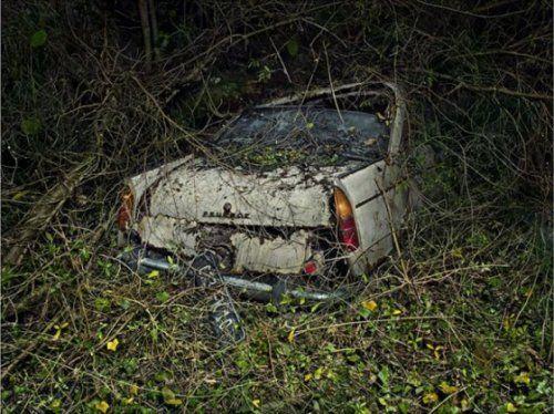 Брошенные автомобили в объятиях природы - фото 9