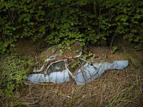 Брошенные автомобили в объятиях природы - фото 6