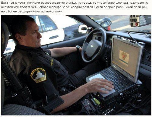 Как работает американская полиция - фото 13