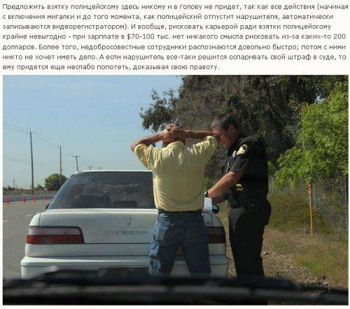 Как работает американская полиция - фото 2