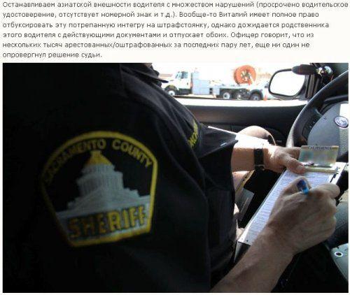 Как работает американская полиция - фото 21