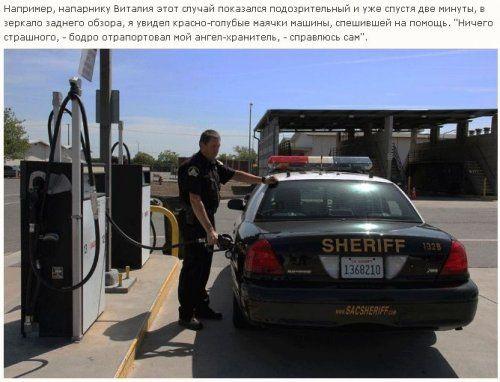 Как работает американская полиция - фото 25